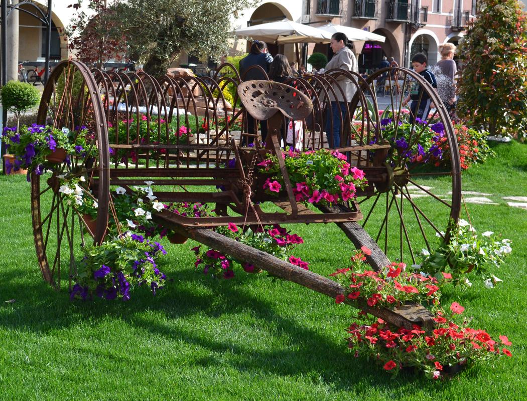Giardini azienda vivaistica toniolo erika - Grossi fiori da giardino ...