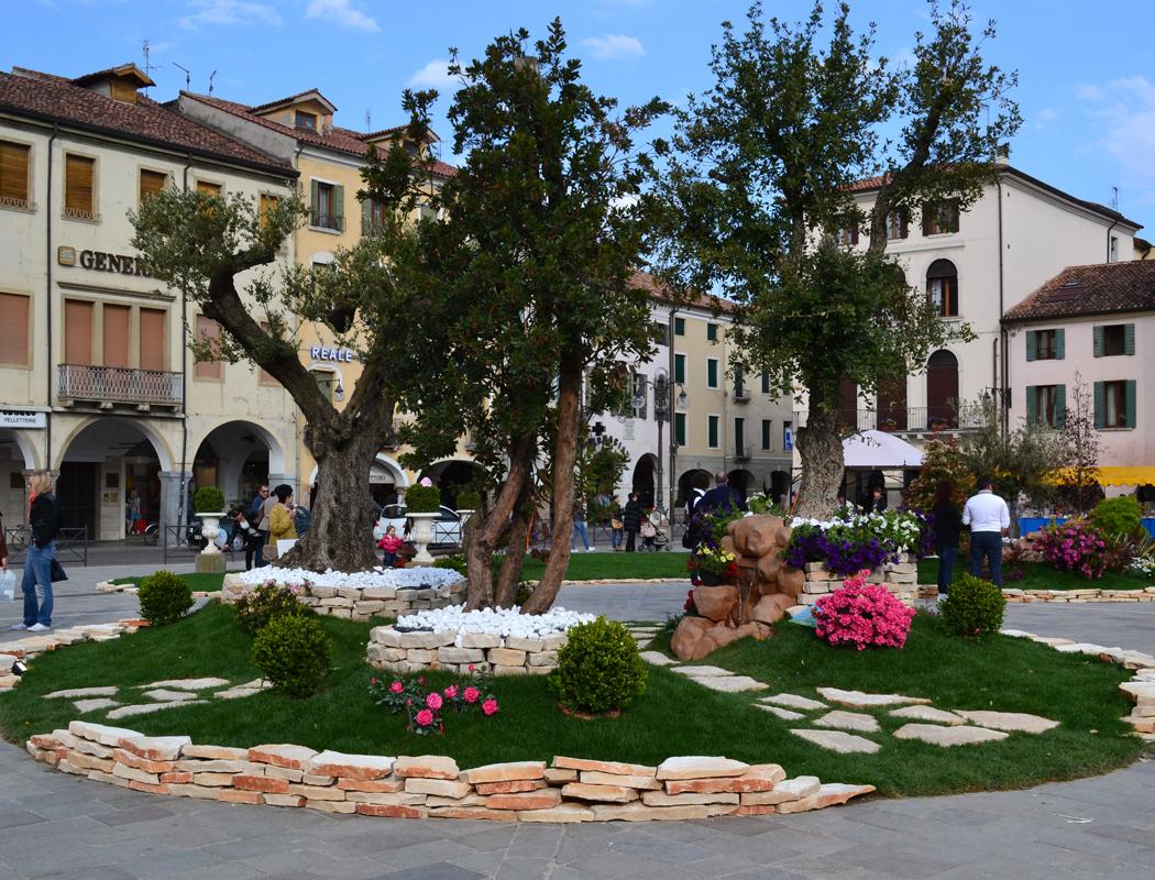 Giardini azienda vivaistica toniolo erika - Giardino con ulivi ...